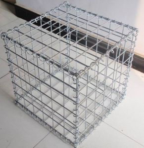 Easily Assembled Welded Wire Mesh with Moderate Price and Reliable Quality pictures & photos