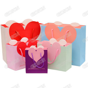 Heart Printed Paper Shopping Bag/ Gift Packaging pictures & photos