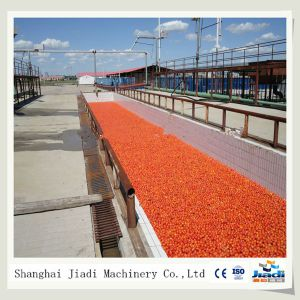 Multifunctional Tomato Paste Production Line, Fruit Paste Production Line pictures & photos