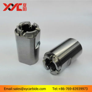 Cutom Shaped Tungsten Carbide Parts pictures & photos