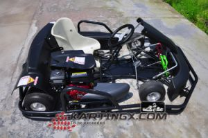 270cc Go Kart Racing Kart F1 6.5HP with Wet clutch pictures & photos