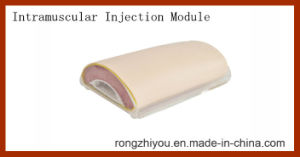 Simplified Intramuscular Injection Training Pad Model pictures & photos