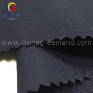 228 T Dull Nylon Taffeta Fabric for Garment Textile (GLLML326) pictures & photos