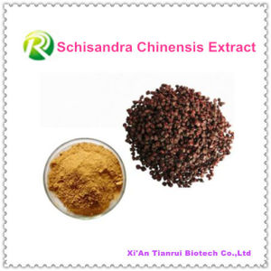 High Quality 100% Natural Plant Extract Schisandra Chinensis Powder pictures & photos