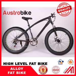 Wholesale Cheap Price Fatbike, Fat Bike Cheap Price, 26 Inch Snow Bike Carbon Fat Bike Frame pictures & photos