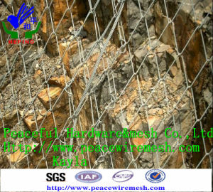 Sns Active Protection Netting pictures & photos