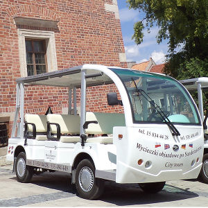 Electric Sightseeing Bus (DEL6082K, 8-Seater) pictures & photos