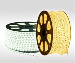 LED SMD5050 DC220V Flexible LED Strip Light for Decoration pictures & photos