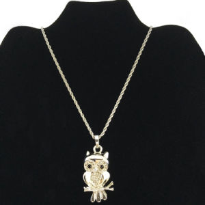 Silver Large Owl Pendant Necklace for Cloth Accessories (FN16040720)