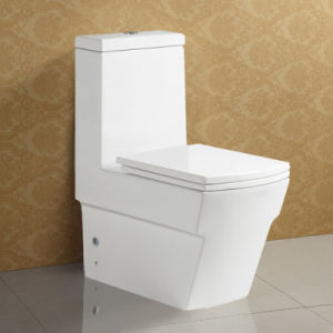 Floor Standing Good Quality Ceramic Wc