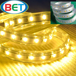 Wholesale 110V 220V Outdoor 50m/Roll White 5630 LED Strip Light pictures & photos