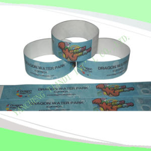 Entertainment Tyvek Customed Cheap Party VIP Paper Wristbands (E3000-1-7) pictures & photos