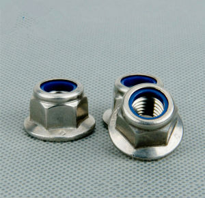 304 Stainless Steel Hexagonal Nut (ATC-460) pictures & photos