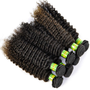Brazilian Virgin Hair Extensions Kinky Curly Grade 5A Human Hair pictures & photos