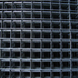 2.5 mm Welded Mesh Made in China pictures & photos