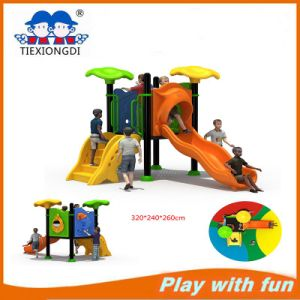 China Amusement Park Outdoor Playground Equipment Txd16-Bh106 pictures & photos