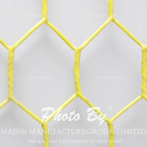 Hex Netting /Vinyl Coated Hex Netting/PVC Coated Hex Netting pictures & photos