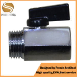 1/4 Inch Mini Brass Ball Valve for Sale pictures & photos