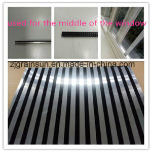 Aluminum Coil for The Building pictures & photos