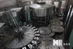 Km Pure Water Filling and Sealing Machine pictures & photos