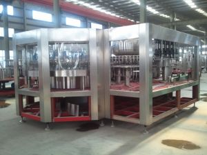 High Quality Water Melon Juice Filling Machine in Pet Bottles pictures & photos