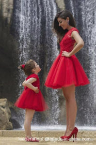 Family Party Dresses Short Lace Mother Daughter Prom Gowns Ck2017 pictures & photos
