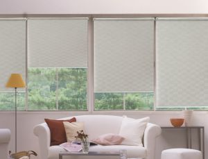 Home Use Windows Roller Blinds High Quality Blinds pictures & photos