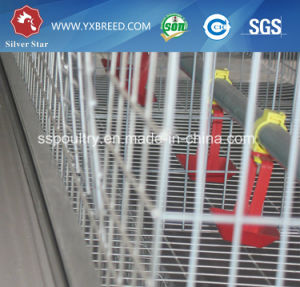 High Quality Materials Broiler Cage Poultry Farm Chicken Cage pictures & photos