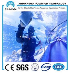PMMA Material PMMA Panel of Aquarium pictures & photos