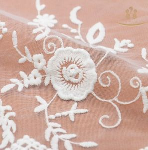 Mesh Lace for Cloth, Bags, Shoes Lace pictures & photos