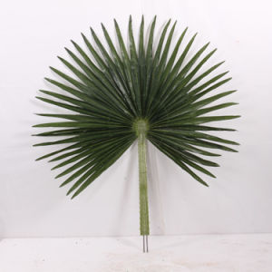 UV Protected Artificial Palm Tree Leaves pictures & photos