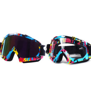 Daisy High Quality Motocross Goggles/Mx Goggle/Ski Goggles (AG012) pictures & photos