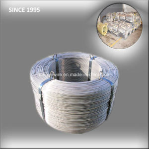Low Price Custom Compression Spring Wire pictures & photos