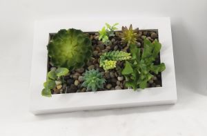 PU Plastic Decoration Photo Frame Succulent pictures & photos