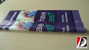 Double Side Printing PVC Flex Banner Double Sides Vinyl Banner (DOU-02) pictures & photos