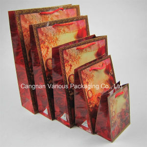 Kraft Paper Bag with Colorful Printing for Packaging pictures & photos