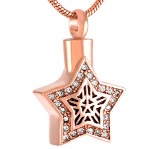 Ijd9213 High Quality Shiny Star Stainless Steel Urn Ashes Holder Necklaces Memorial Cremation Keepsake Jewelry pictures & photos