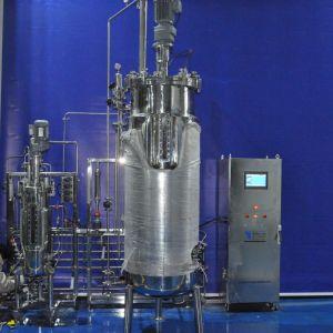 50 Liters 500 Liters Duplex Fermenter