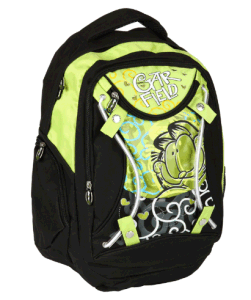 School Backpack Bag, Boy′s Student School Bag pictures & photos