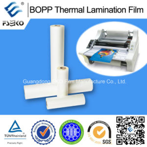 BOPP Thermo Lamination Film with EVA Glue pictures & photos