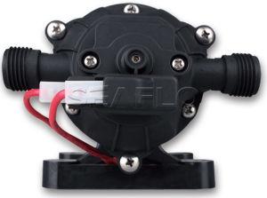 Seaflo 12V DC Miniature Diaphragm Water Pump pictures & photos