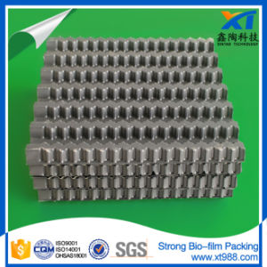 Strong Bio-Film Packing Carrier pictures & photos
