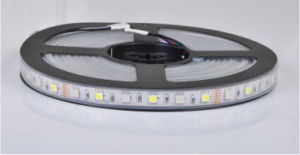 Single Row RGB + White interval SMD5050 LED Strip 60 LED/m 14.4 W IP68 full color LED strip pictures & photos
