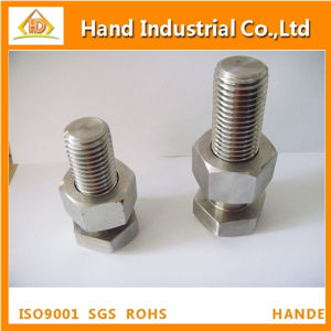 Stainless Steel M27X110 High Strength Hex Bolt with Nut pictures & photos