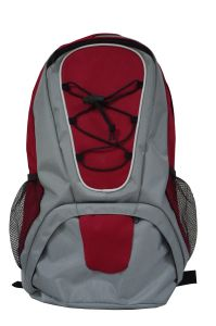 Stylish Sport Modern Backpack for Outdoor Sh-16122852 pictures & photos