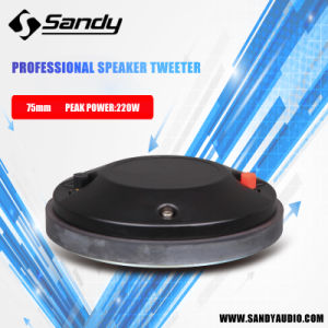 Professional Audio Speaker High Frequency Tweeter (RJ75170B) pictures & photos