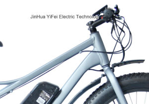 Big Power 26 Inch Fat Tire Electric Bicycle with Lithium Battery Beach Cruiser pictures & photos