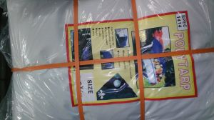High Quality PE Tarpaulin by Sheet Tb014 pictures & photos