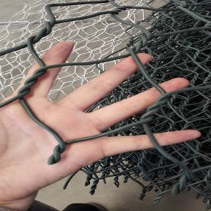Factory Price Galvanized Gabion Mesh/Gabion Box pictures & photos