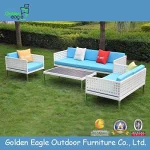 Modern Outdoor Garden Rattan Sofa pictures & photos